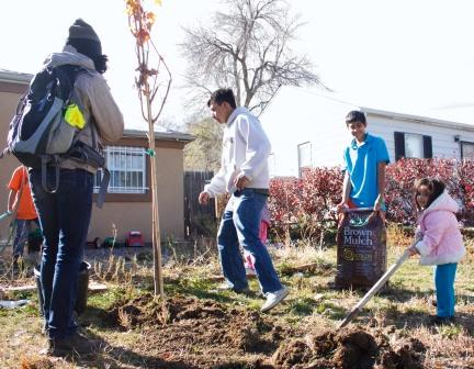 Children help plant a tree with their father and volunteers in Valverde.