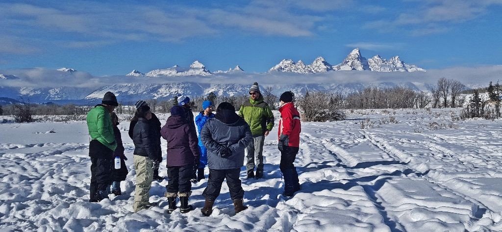 group circle teton background