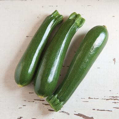 Organic Squash, Dunja (Zucchini)